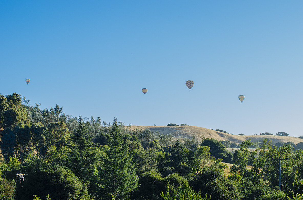 hot-air-balloons-napa